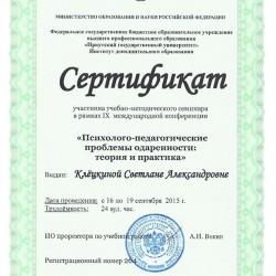 Сертификат участника учебно-методического семинара в рамках IX международной конференции